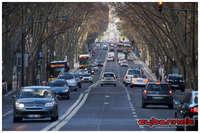 LISBON / Avenida de Liberdade